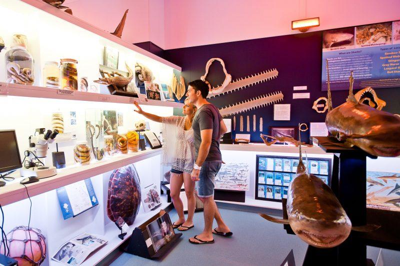 Marine Discovery Centre