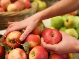 Mates Gully Produce Market Wagga Wagga