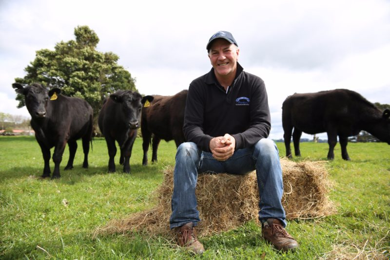 Dad with cows