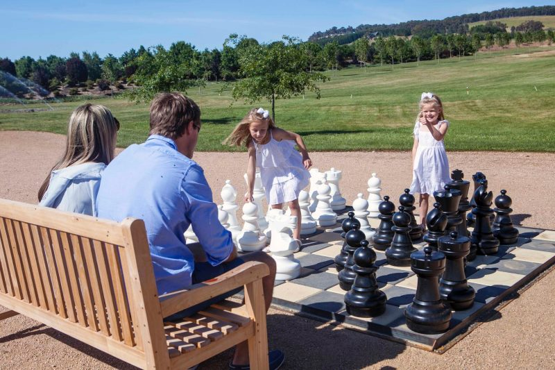 Mayfield Chess
