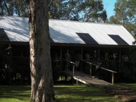 Melaleuca Surfside Backpackers six person share rooms
