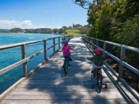 Mill Bay Boardwalk and cycle-way Narooma