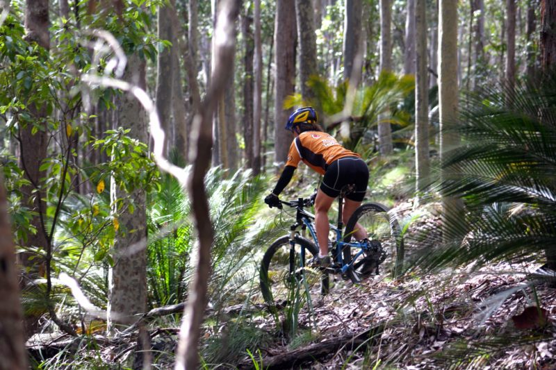 Mountain bike rider in the bush
