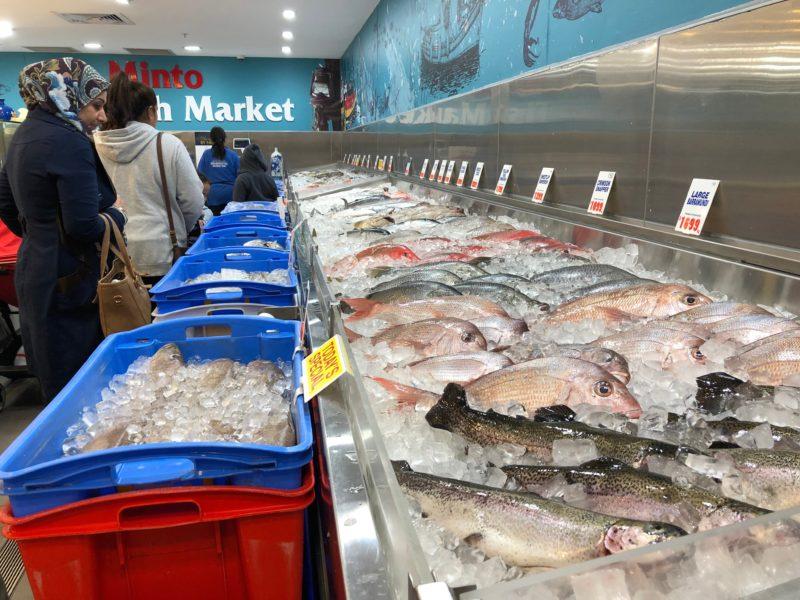 Minto Fish Market