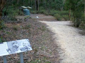 Molly O'Neill nature track