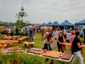 Mollymook Markets