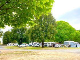 Powered sites Molong Caravan Park