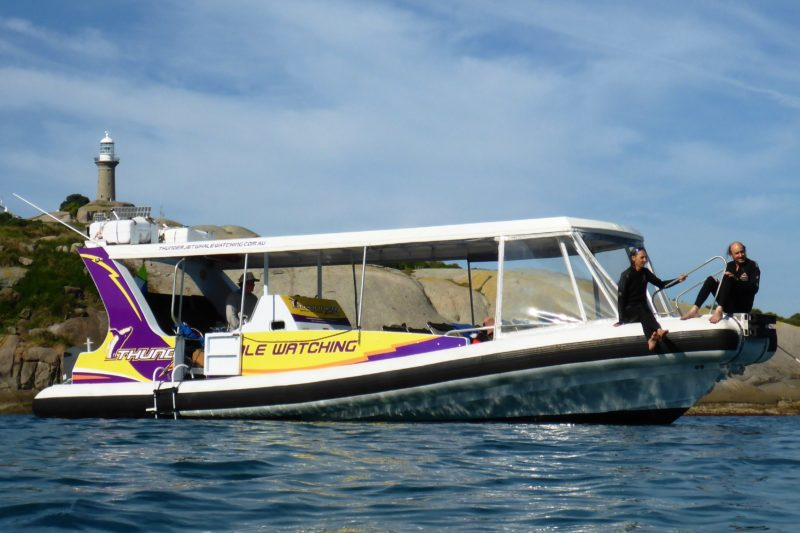 Montague Island Discovery Tours