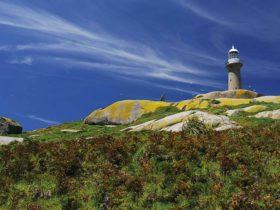 Montague Lighthouse. Photo:Stuart Cohen
