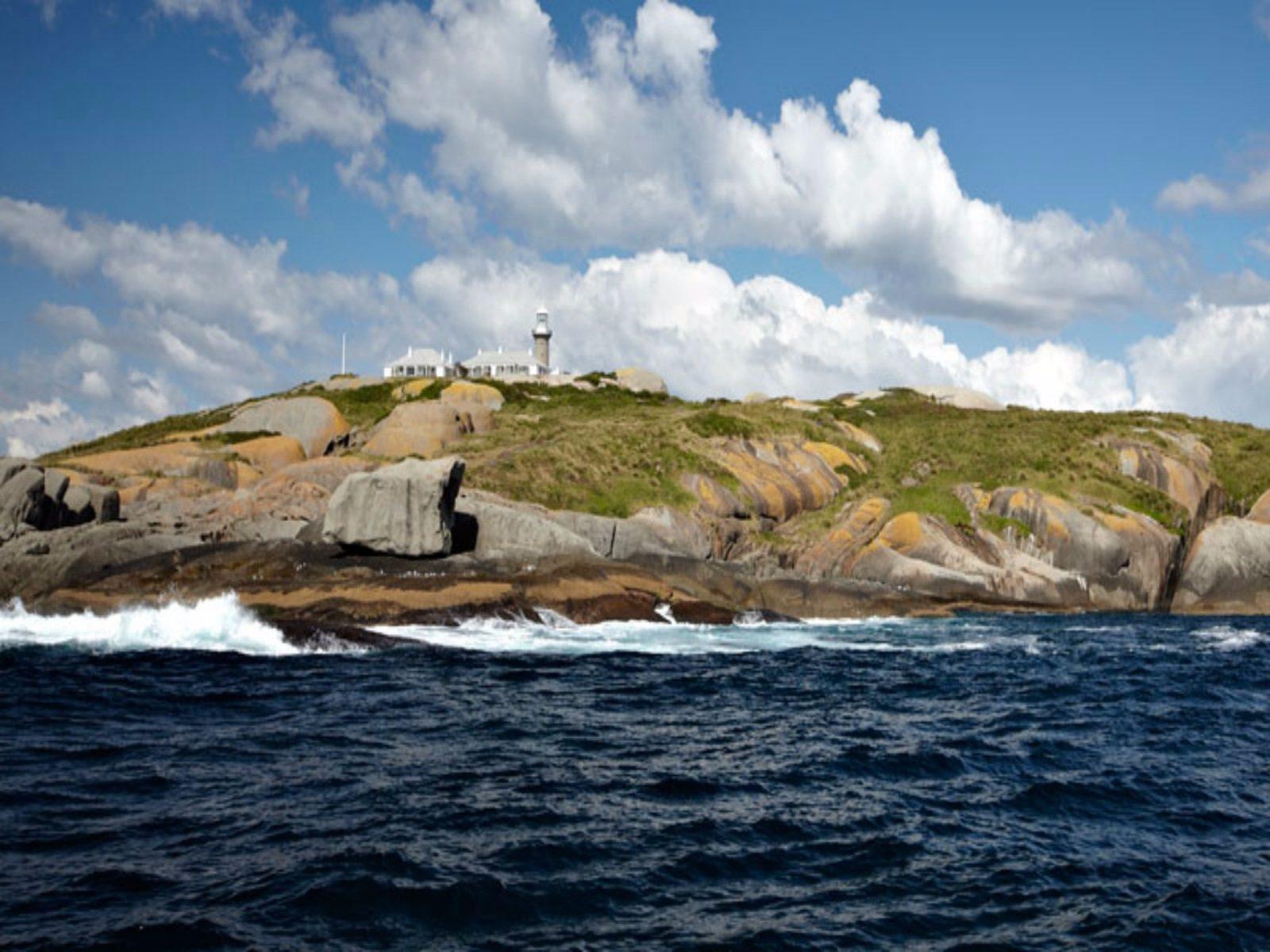 Montague Island Nature Reserve