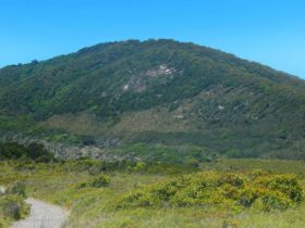 Monument Hill walking track, Arakoon National Park. Photo: Debby McGerty