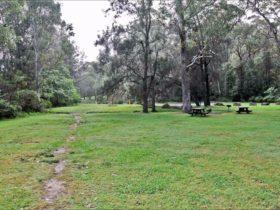 Moola picnic area