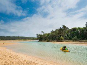 Moonee Creek, Moonee Beach Nature Reserve. Photo: David Young