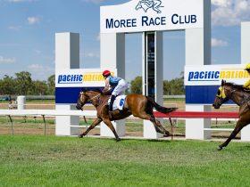 Moree Race Club