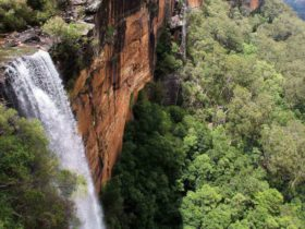 Fitzroy Falls view from above. Photo: John Yurasek