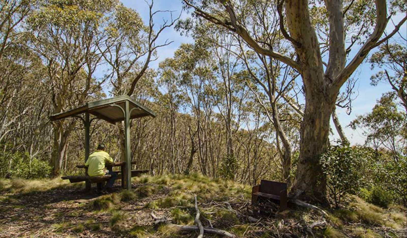 Mount Barrington picnic area