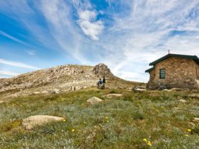 Summit Walk and Trail, Kosciuszko National Park