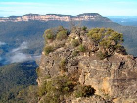 Mount Solitary Walking Track, Blue Mountains
