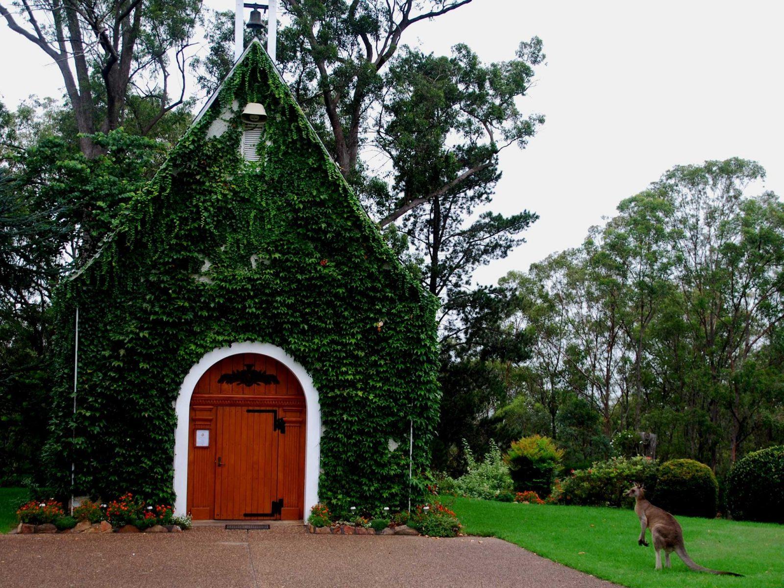 Kangaroo next to Shrine