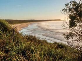 Buckleys Beach. Courtesy of Michael Van Ewijk/OEH