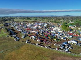 Aerial view of Field Days