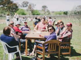 People Relaxing in the sun at Four Winds Vineyard