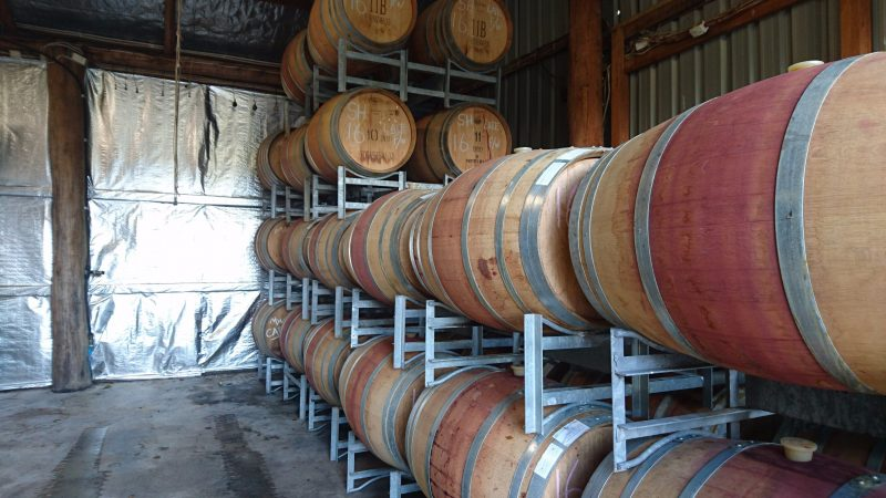 Red wine barrels in a shed