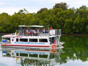 Nambucca River Cruises