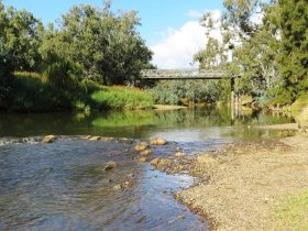 Namoi River at Cohen's Bridge