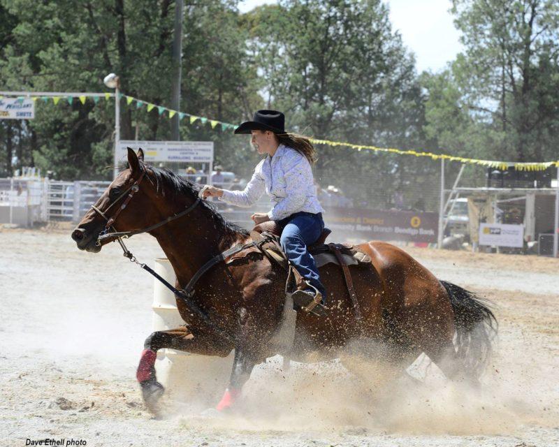 horse, barrel riding