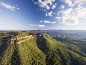 Narrow Neck Blue Mountains
