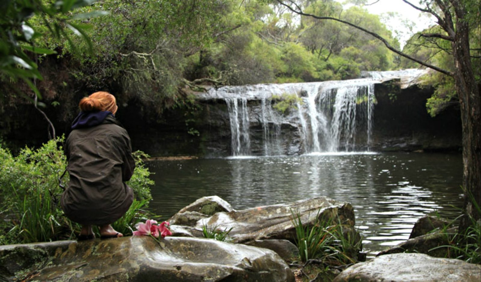 Person sitting at Nellies Glen picnic area, Budderoo National Park. Photo: Andy Richards
