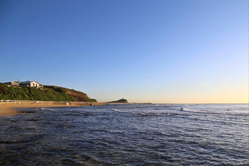 Surfers enjoying a morning surf at Nobbys Beach, Newcastle