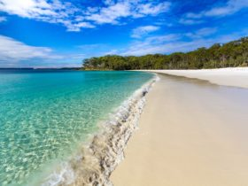 Green Patch Beach Jervis Bay National Park