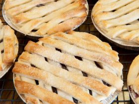 Nundle Craft Inc pies