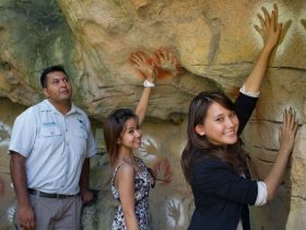 Nura Diya Aboriginal Wildlife Tour at Taronga Zoo