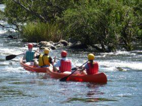 Nymboida River Canoes