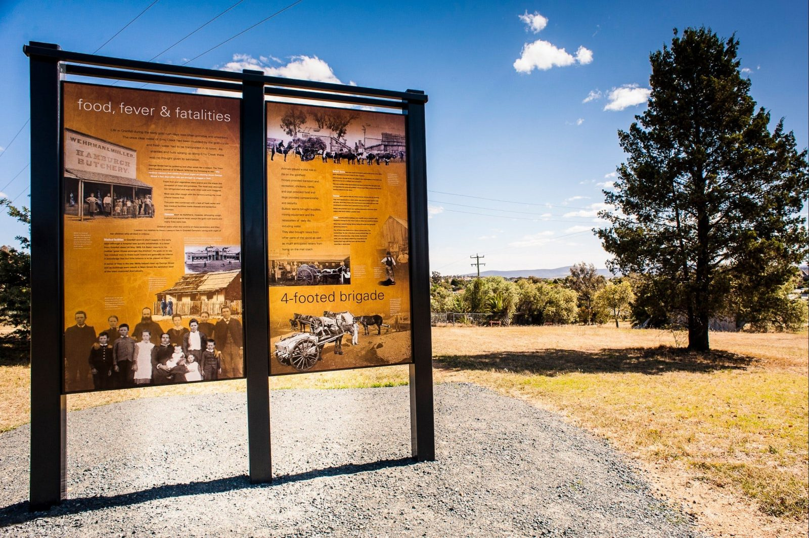 Interpretive signage at O'Brien's Hill Grenfell