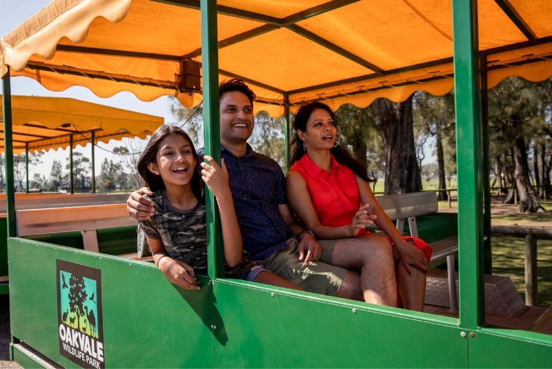 Tractor Ride around Park