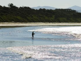 Fishing at Old Bar Beach