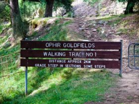 Ophir Reserve Walking Track