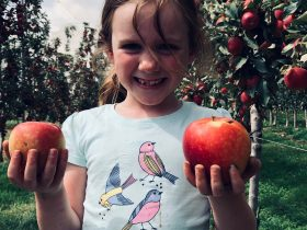 Orange Apple Ramble