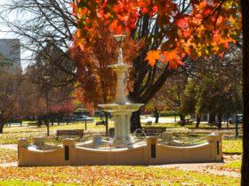 Robertson Park Orange NSW