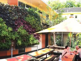 Original Backpackers Green Courtyard
