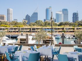 Waterside views on the Finger Wharf at Woollomooloo