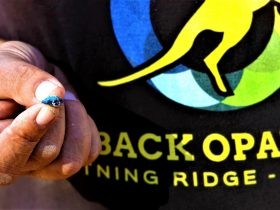 Tour guide Borko showing rough black opal