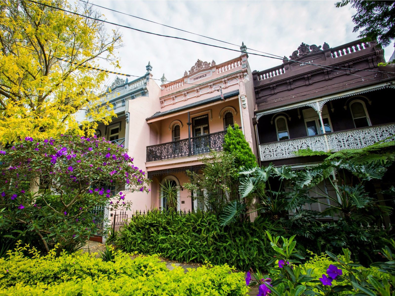 Victorian terraces throughout the leafy inner Sydney suburb of Paddington