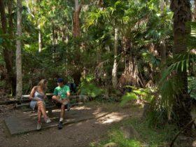 Palms picnic area