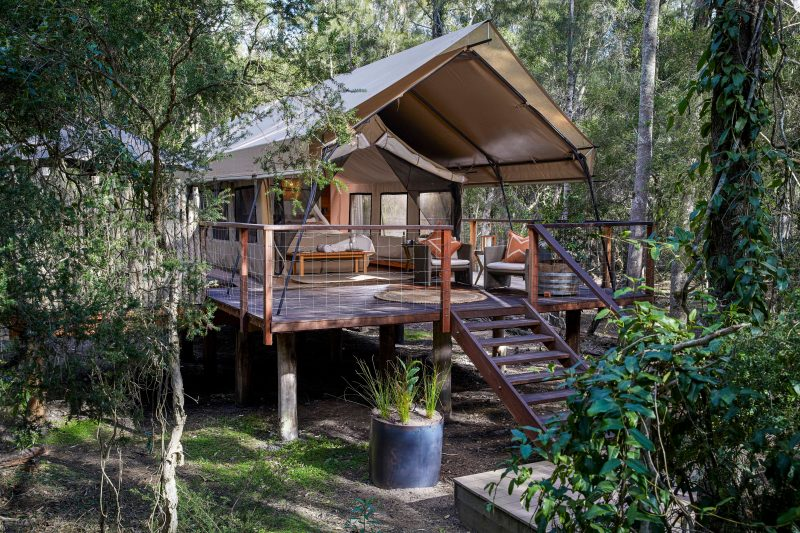 Luxury safari tent amongst the trees at Paperbark Camp in Jervis Bay