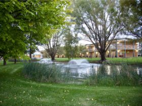 Parklands Resorts Gardens and Water Features